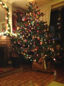 Our Christmas tree in Essex.